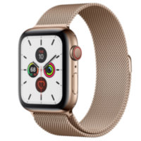 Apple Watch 5 (GPS + Cellular) 44mm Gold Stainless Steel Case with Gold Milanese Loop (MWW62)